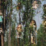 Остров кукол — жуткая мексиканская достопримечательность