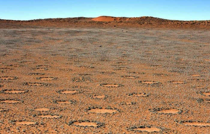 Как выглядят круги пустыни Намиб