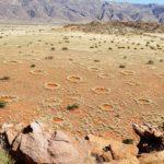 Волшебные круги пустыни Намиб
